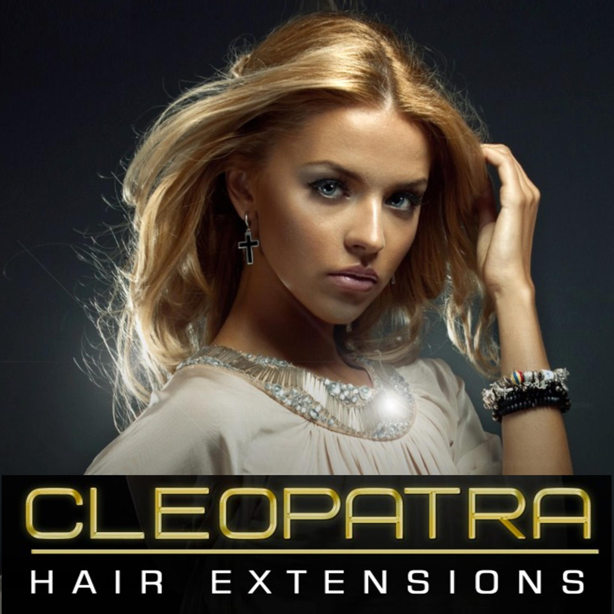 Hair Extensions Clip In Hair Extensions Human Hair Extensions