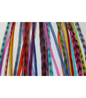 Hair Feathers Bright Colours 10 pack