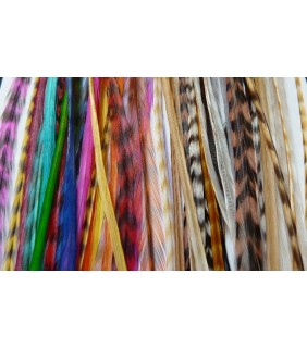 Hair Feathers Bright Colours & Naturals
