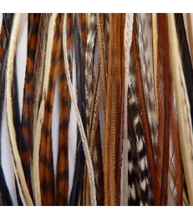 Hair Feathers Natural Colours