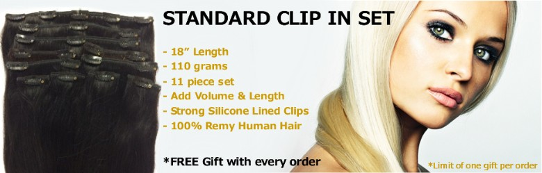 Standard 18 inch clip in set