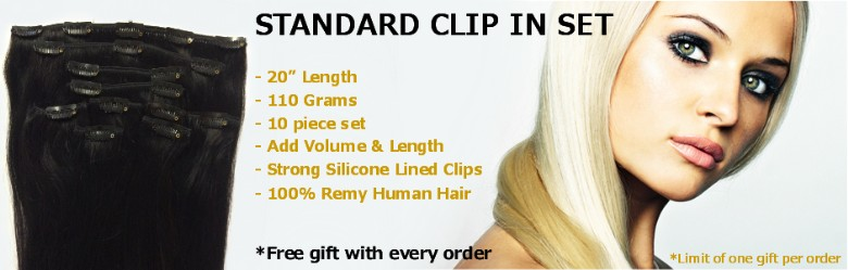 Standard 20 inch clip in set