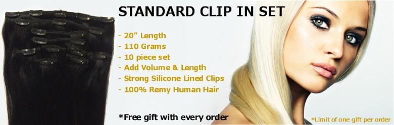 Standard 20 inch clip in set