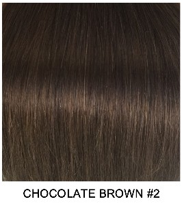 Chocolate Brown #2