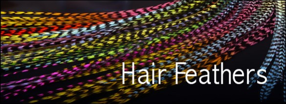 Hair Extension Feathers