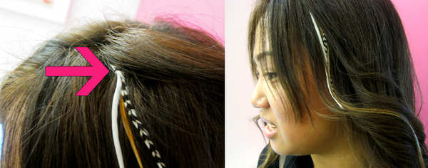How to put in feather hair extensions